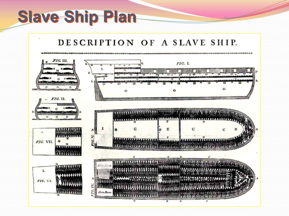 Slave Ship Plan