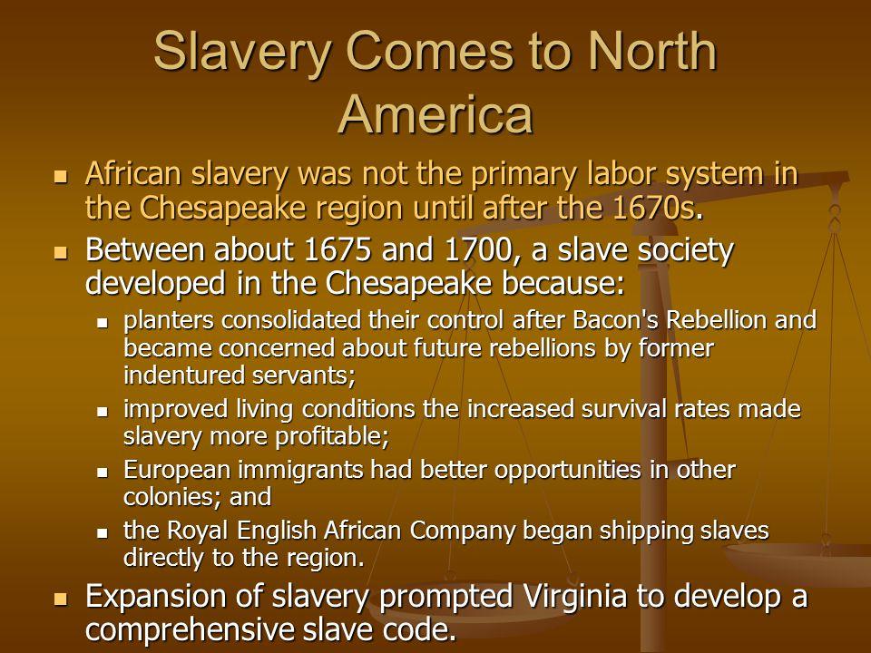 Slavery Comes to North America