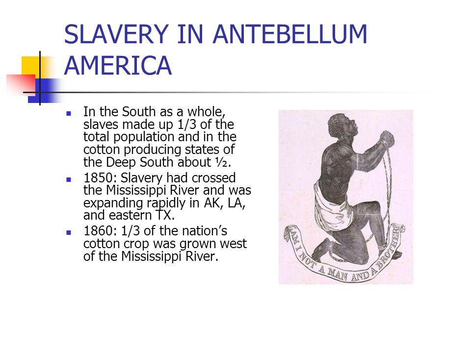 SLAVERY IN ANTEBELLUM AMERICA