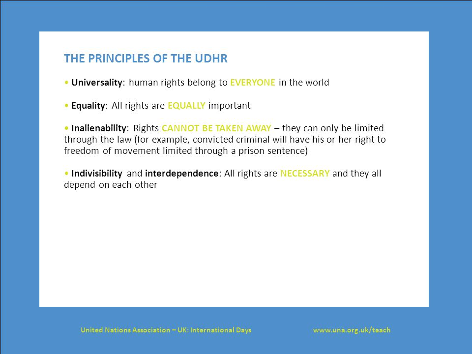 THE PRINCIPLES OF THE UDHR