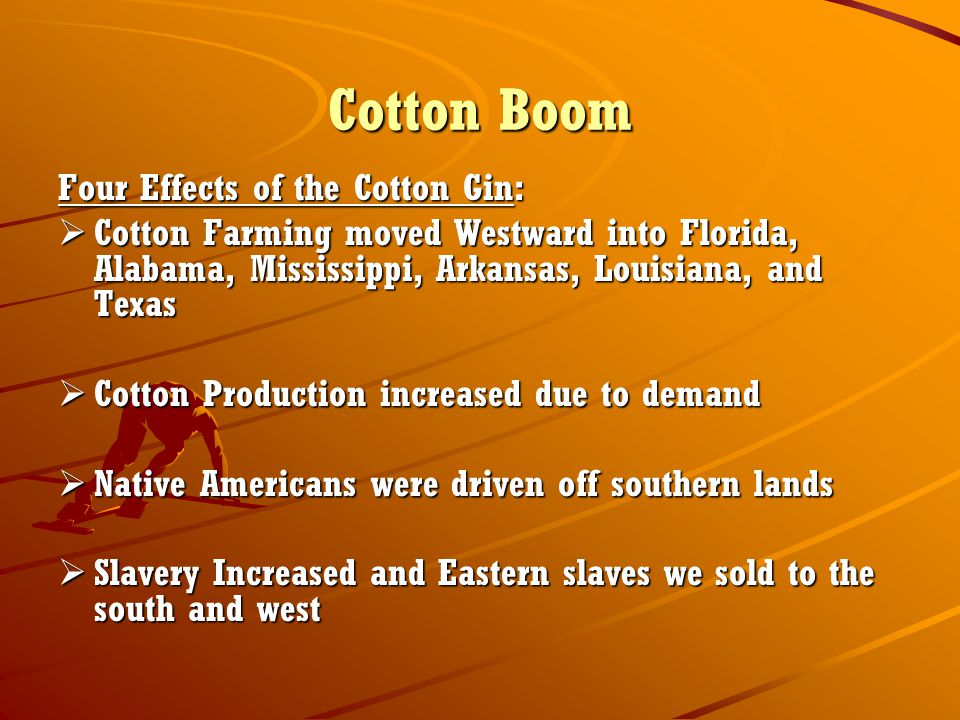 Cotton Boom Four Effects of the Cotton Gin: