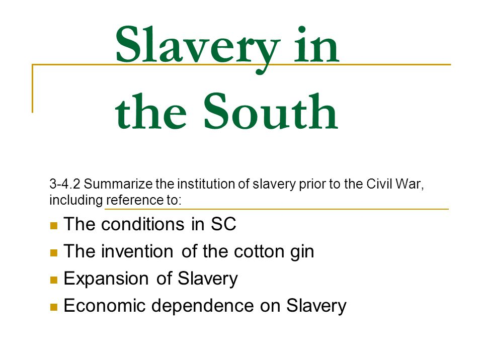 Slavery in the South The conditions in SC