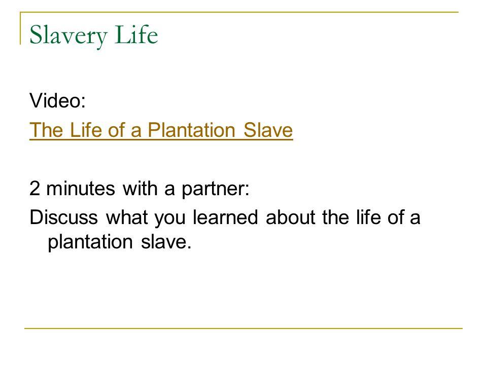 Slavery Life Video: The Life of a Plantation Slave