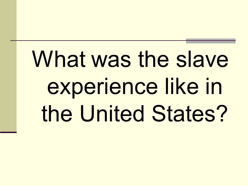 What was the slave experience like in the United States