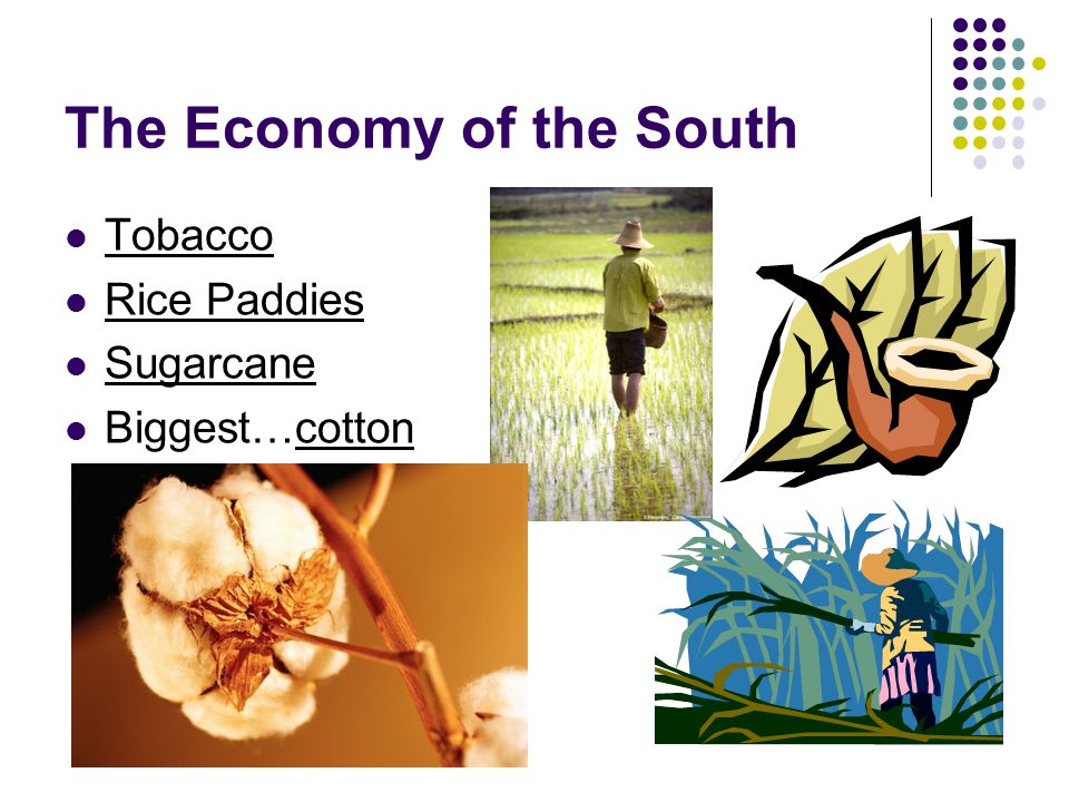 The Economy of the South