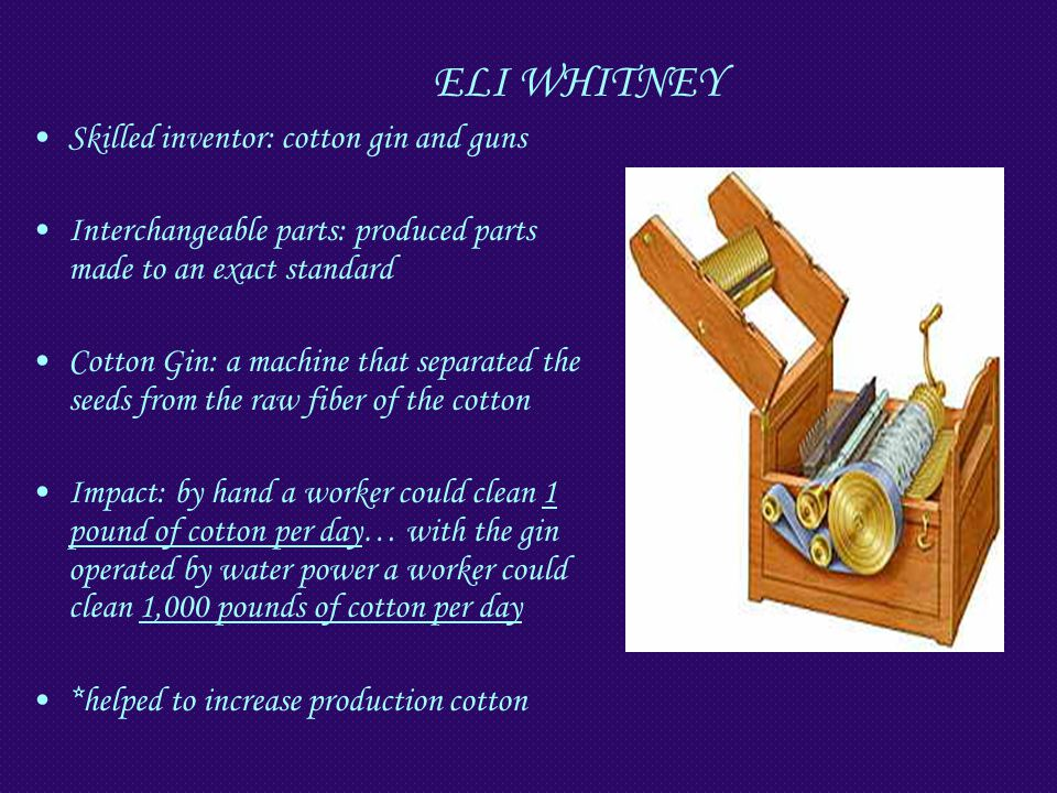 ELI WHITNEY Skilled inventor: cotton gin and guns