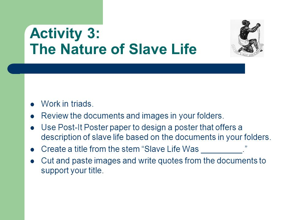 Activity 3: The Nature of Slave Life