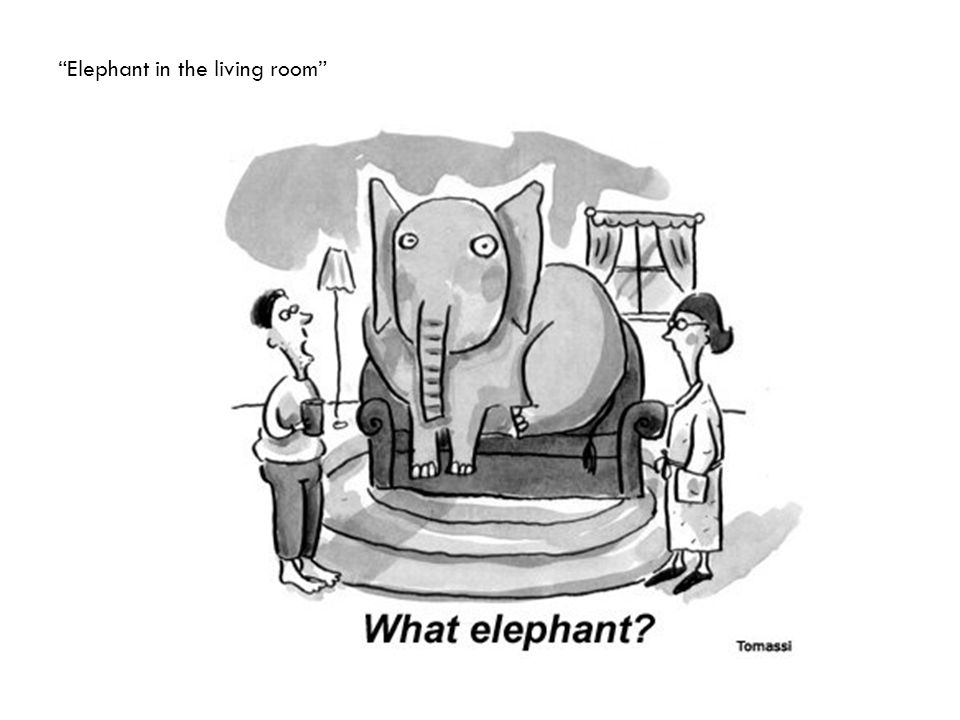 Elephant in the living room
