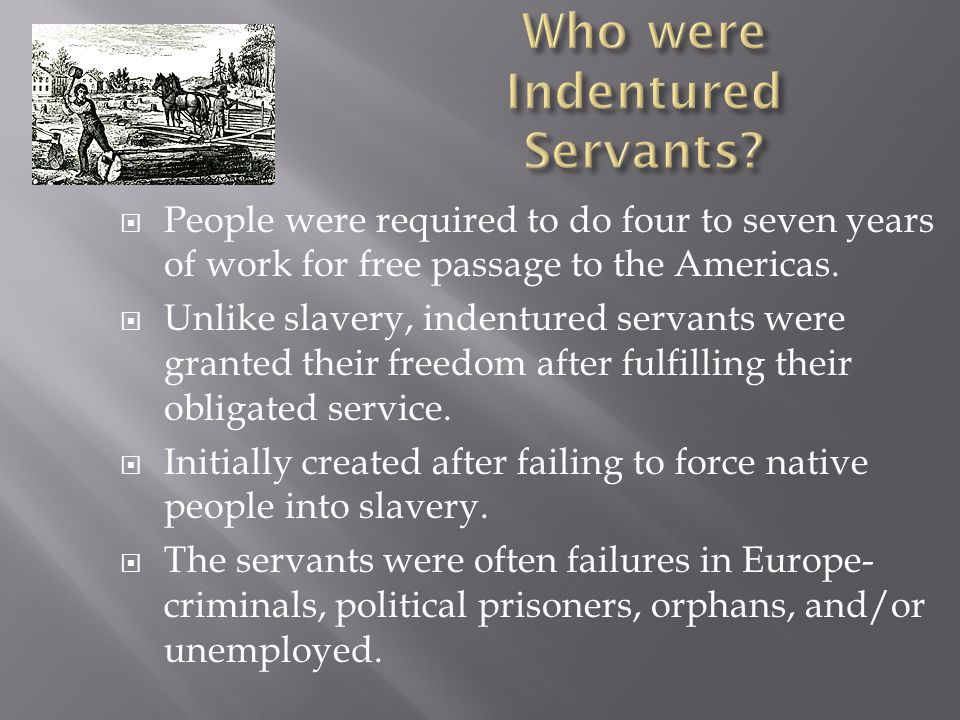 Who were Indentured Servants