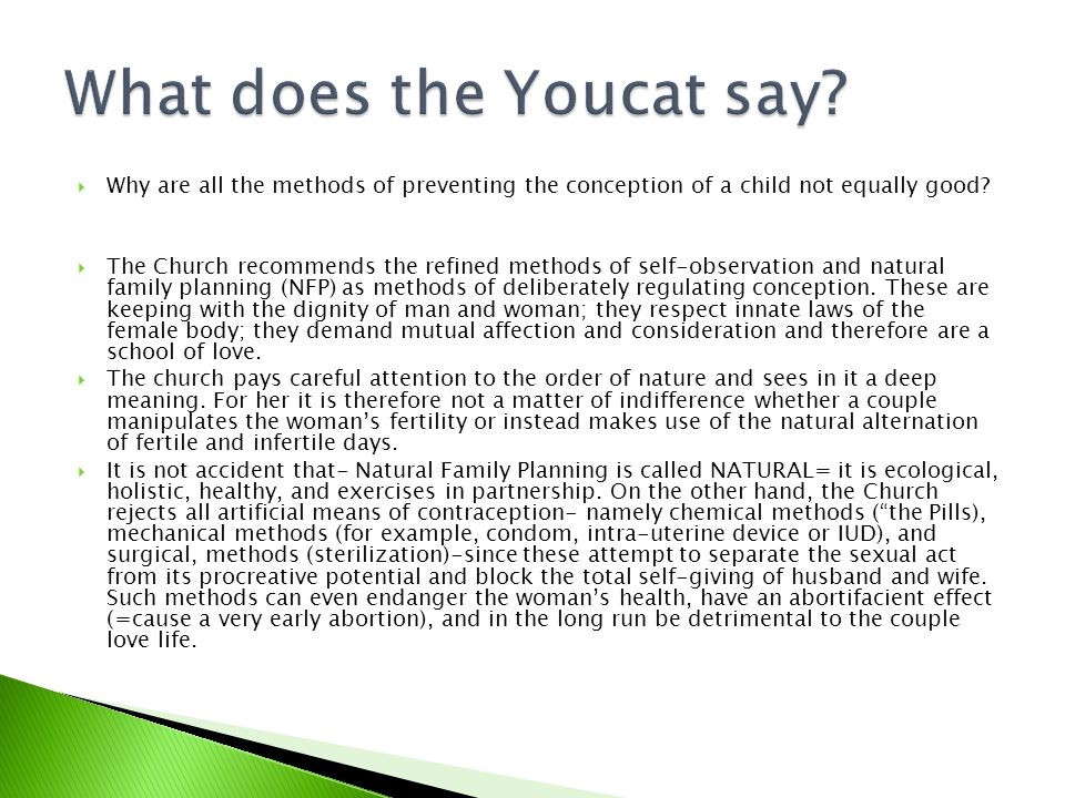 What does the Youcat say