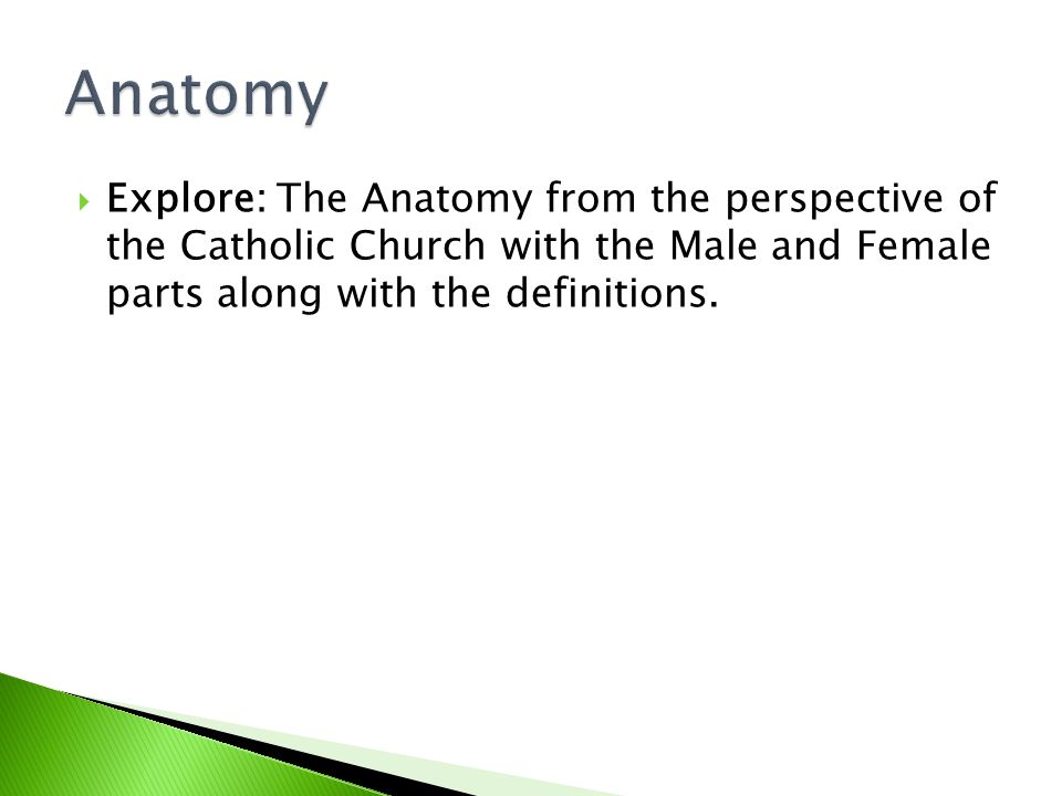Anatomy Explore: The Anatomy from the perspective of the Catholic Church with the Male and Female parts along with the definitions.