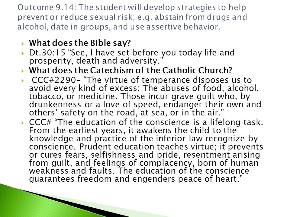 What does the Catechism of the Catholic Church