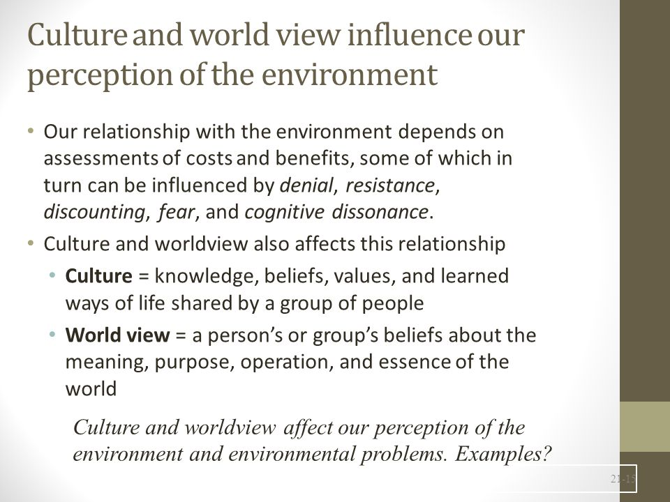 Culture and world view influence our perception of the environment