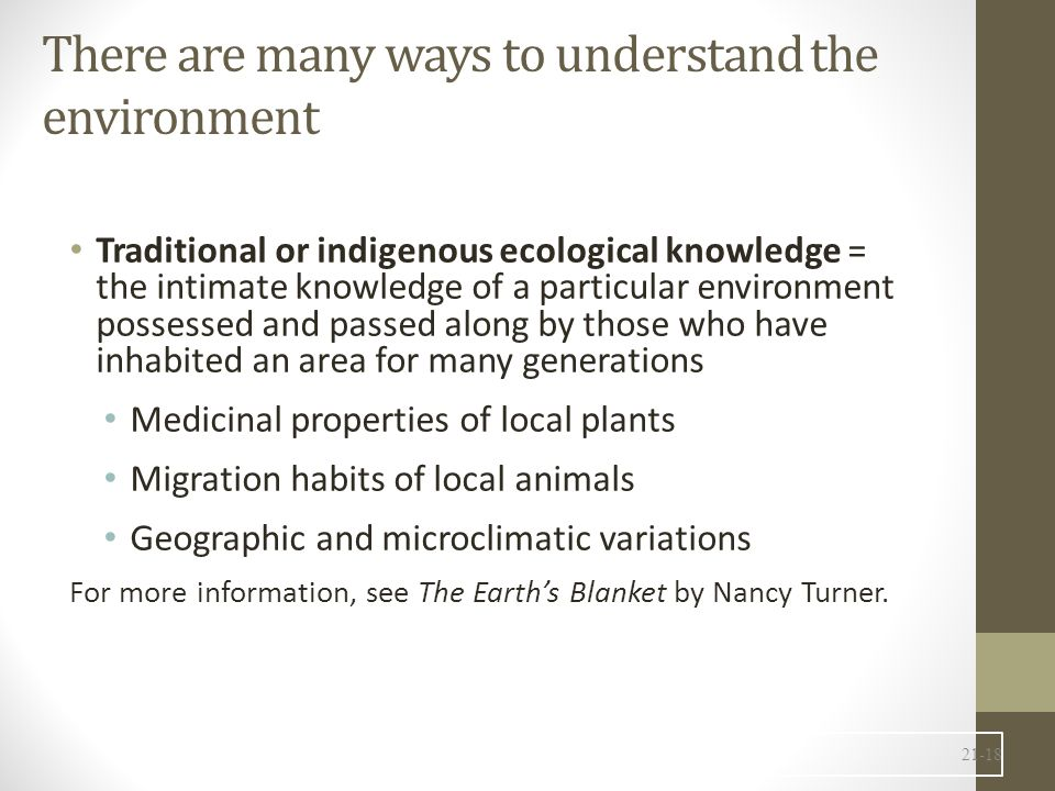 There are many ways to understand the environment
