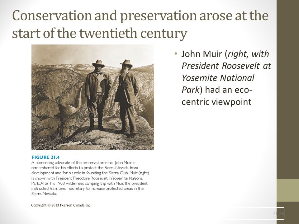 Conservation and preservation arose at the start of the twentieth century