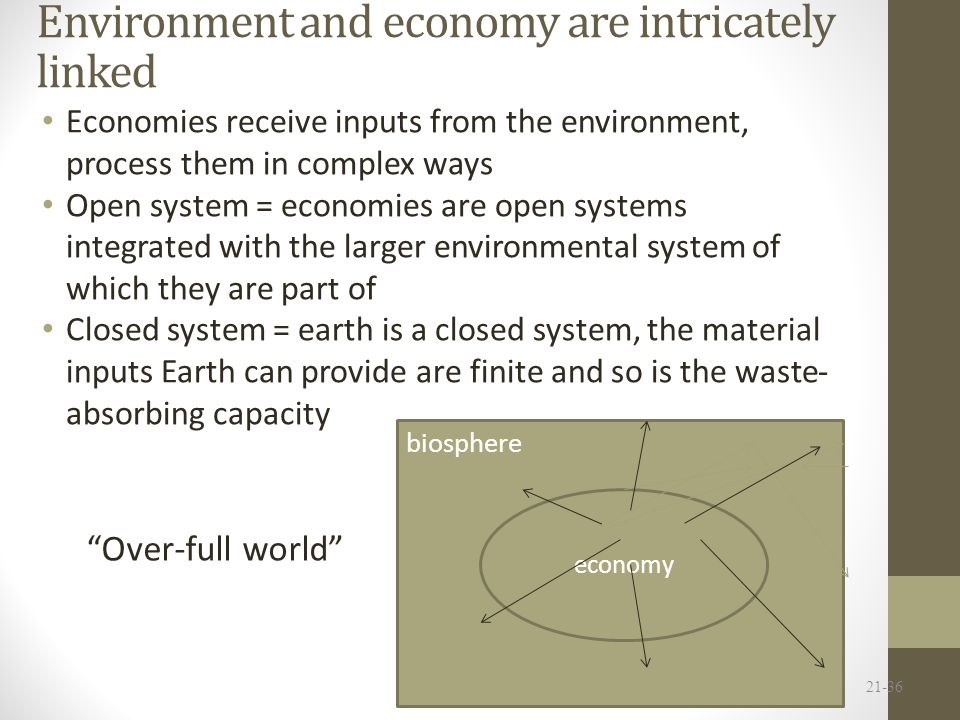 Environment and economy are intricately linked