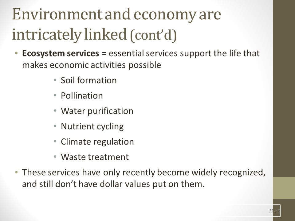 Environment and economy are intricately linked (cont'd)