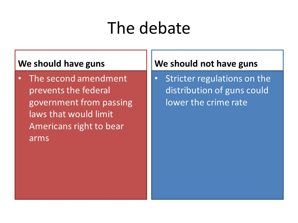 The debate We should have guns We should not have guns