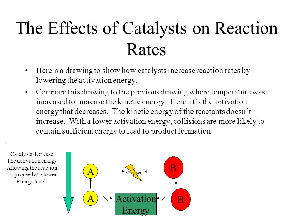 The Effects of Catalysts on Reaction Rates