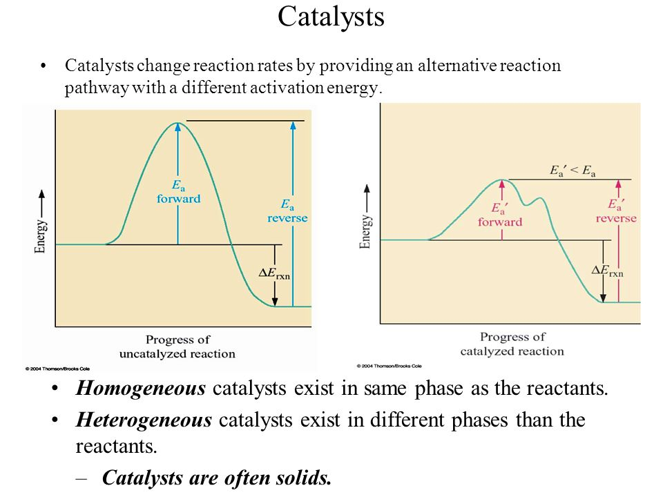 Catalysts Homogeneous catalysts exist in same phase as the reactants.