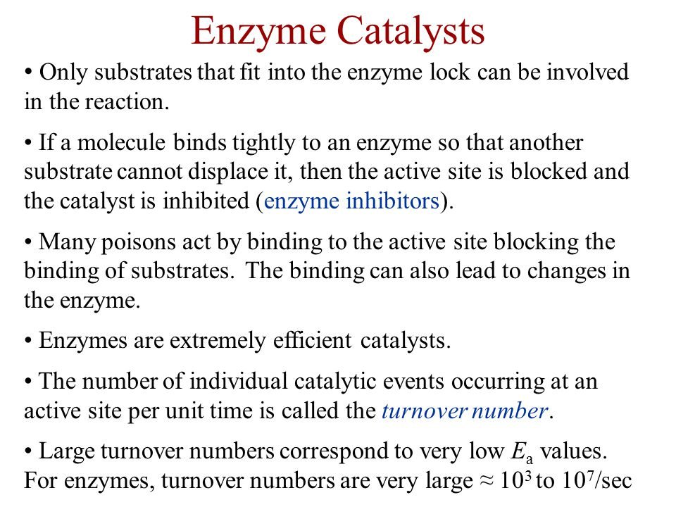 Enzyme Catalysts Only substrates that fit into the enzyme lock can be involved in the reaction.