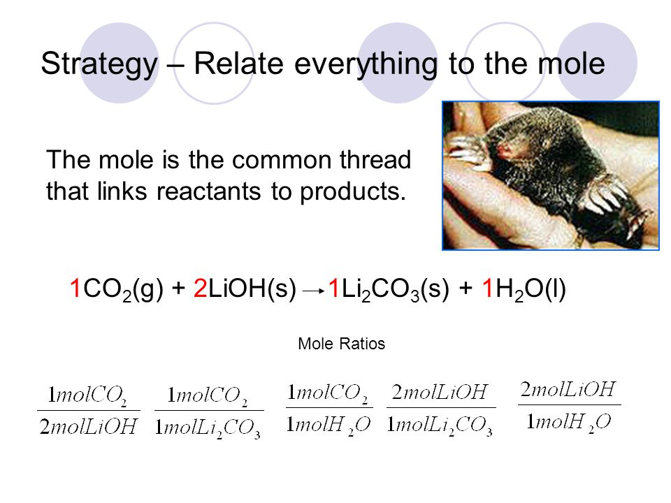 Strategy – Relate everything to the mole