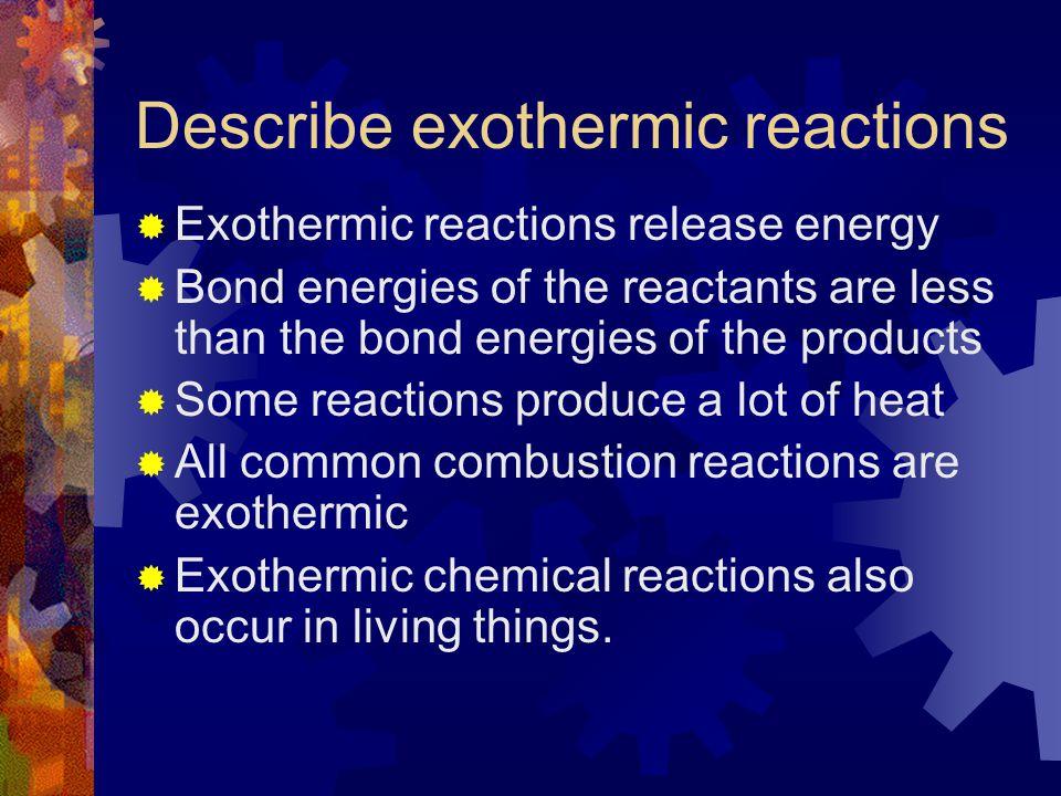 Describe exothermic reactions