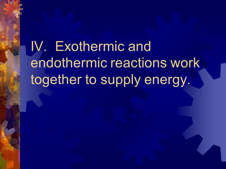 IV. Exothermic and endothermic reactions work together to supply energy.
