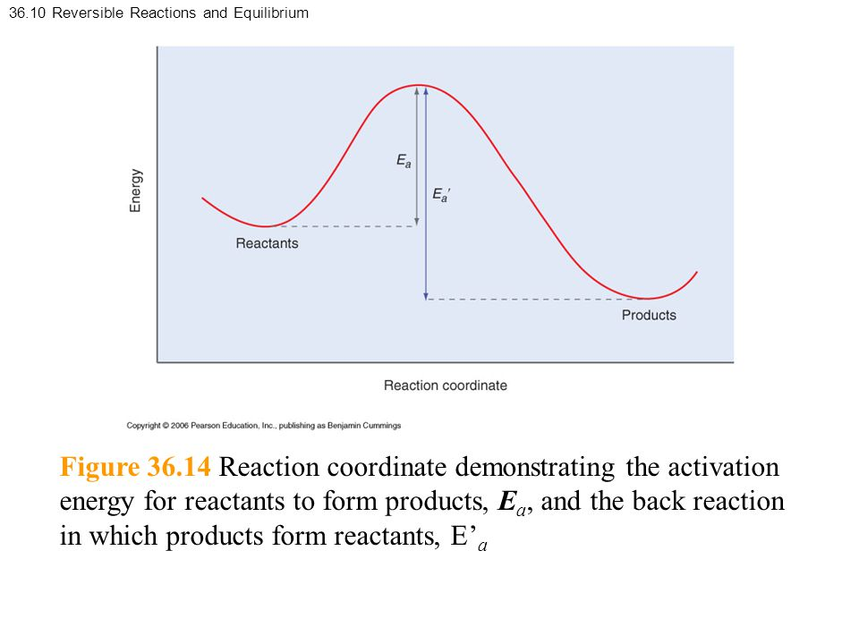 36.10 Reversible Reactions and Equilibrium