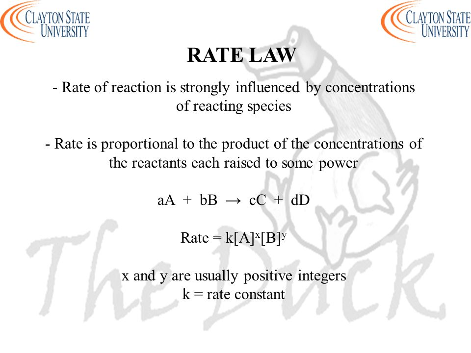 RATE LAW - Rate of reaction is strongly influenced by concentrations