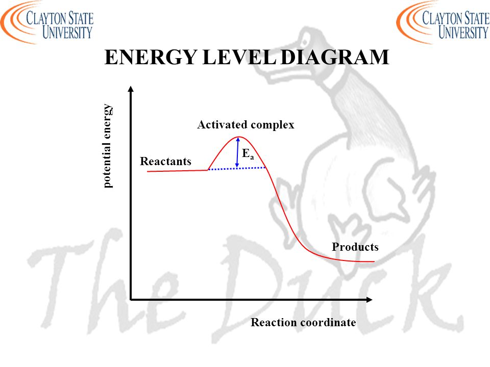 ENERGY LEVEL DIAGRAM Activated complex potential energy Ea Reactants