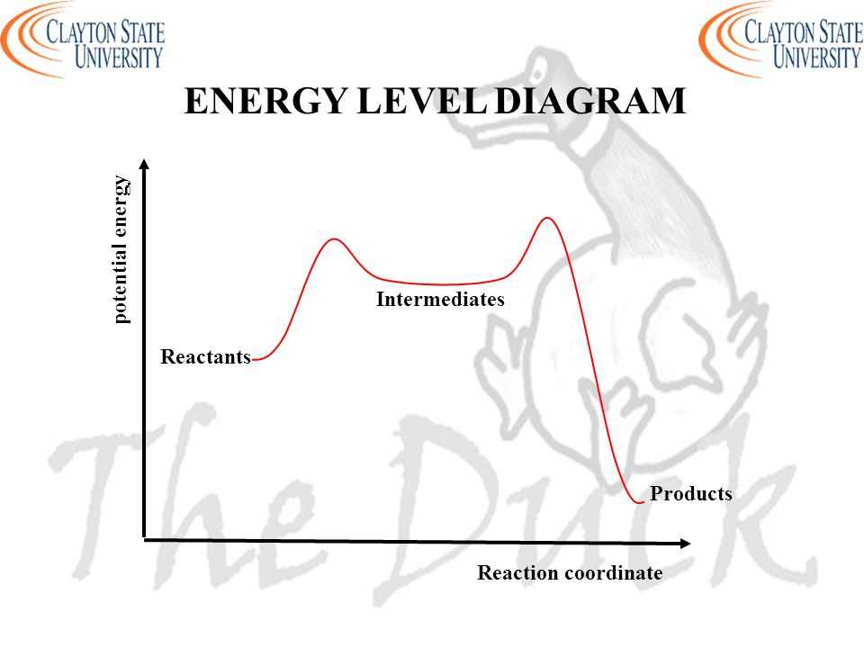 ENERGY LEVEL DIAGRAM potential energy Intermediates Reactants Products