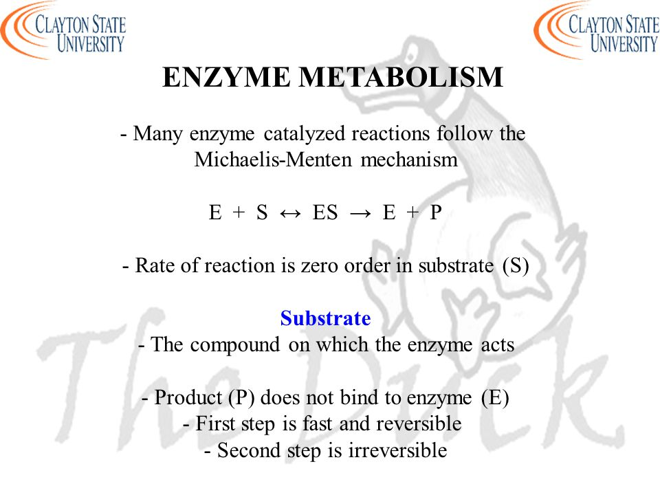 ENZYME METABOLISM - Many enzyme catalyzed reactions follow the