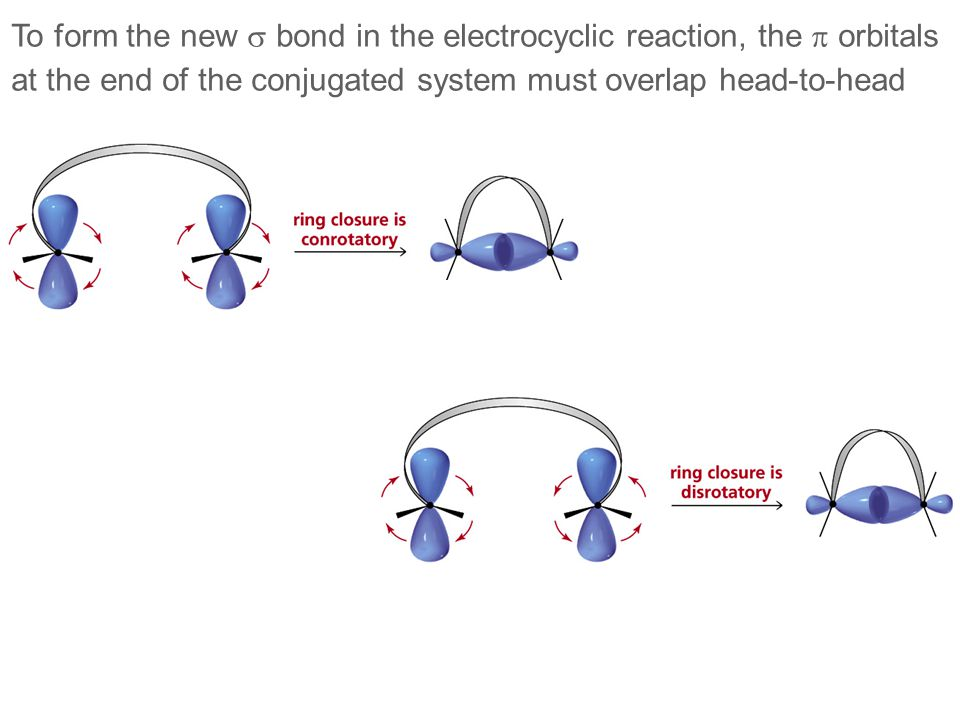 To form the new s bond in the electrocyclic reaction, the p orbitals
