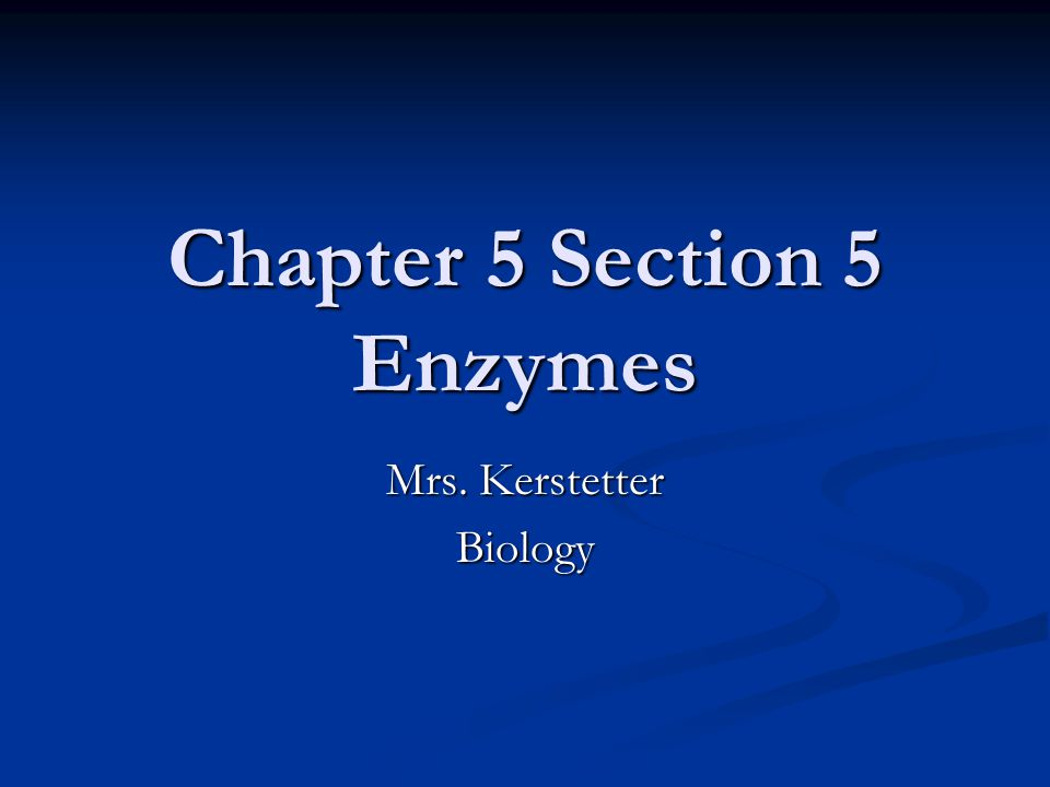 Chapter 5 Section 5 Enzymes