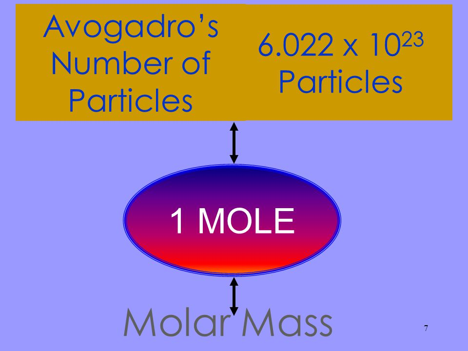 Avogadro's Number of Particles