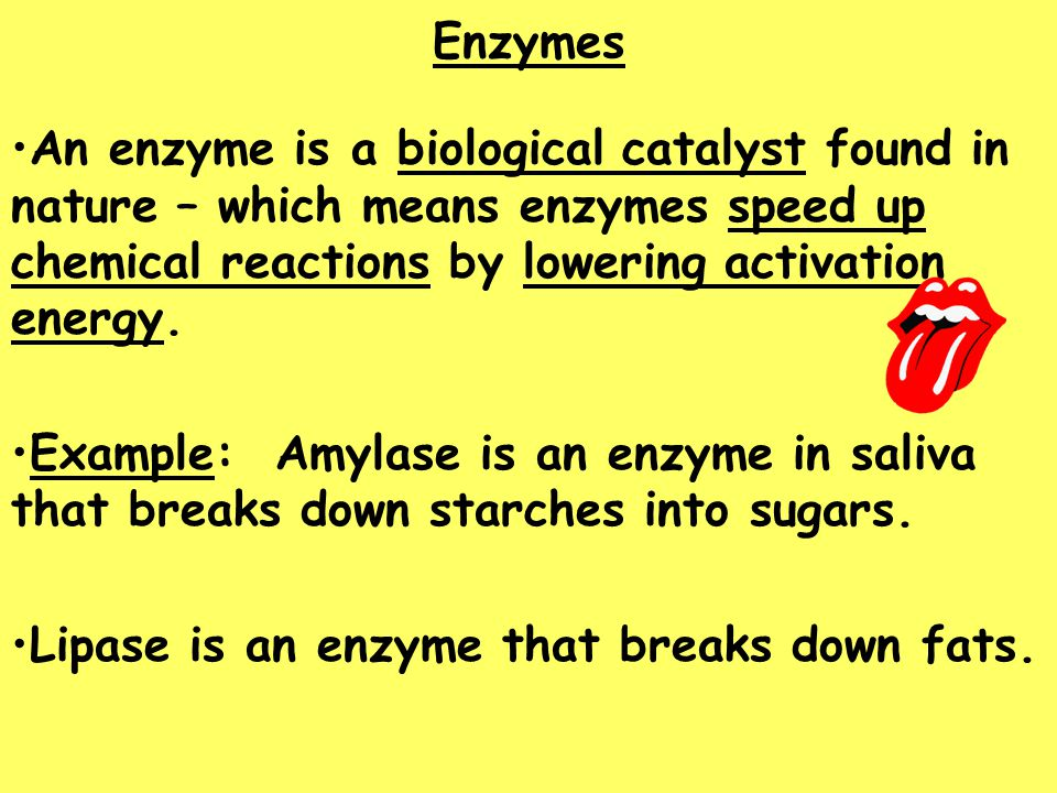 Enzymes An enzyme is a biological catalyst found in nature – which means enzymes speed up chemical reactions by lowering activation energy.
