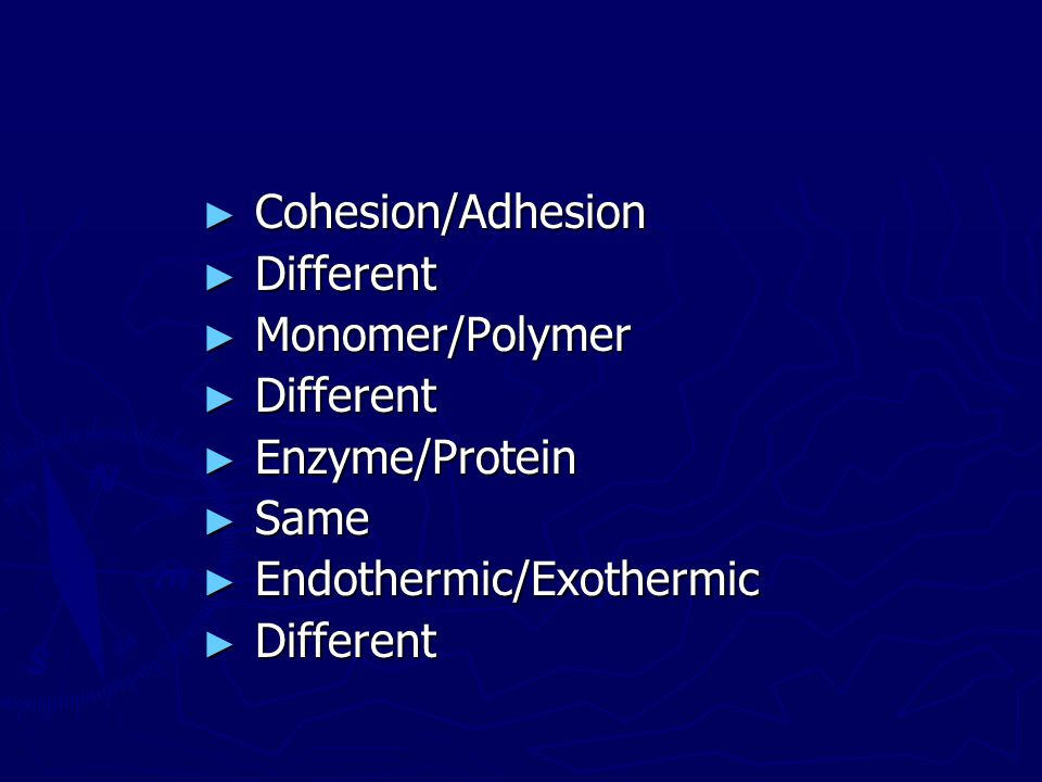 Cohesion/Adhesion Different Monomer/Polymer Enzyme/Protein Same Endothermic/Exothermic