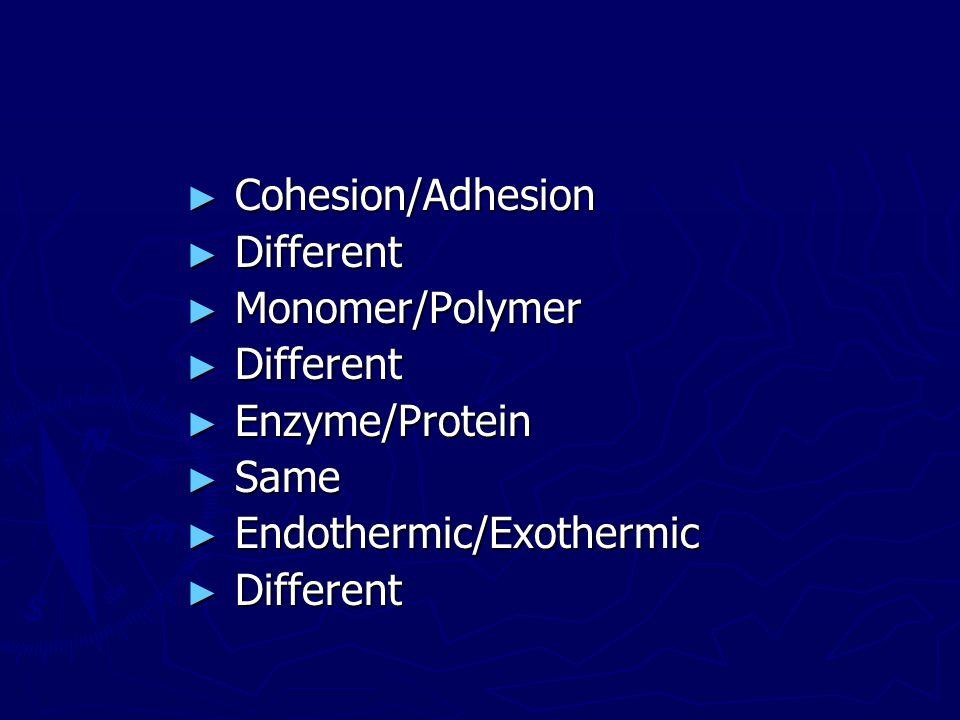 Cohesion/Adhesion Different Monomer/Polymer Enzyme/Protein Same Endothermic/Exothermic