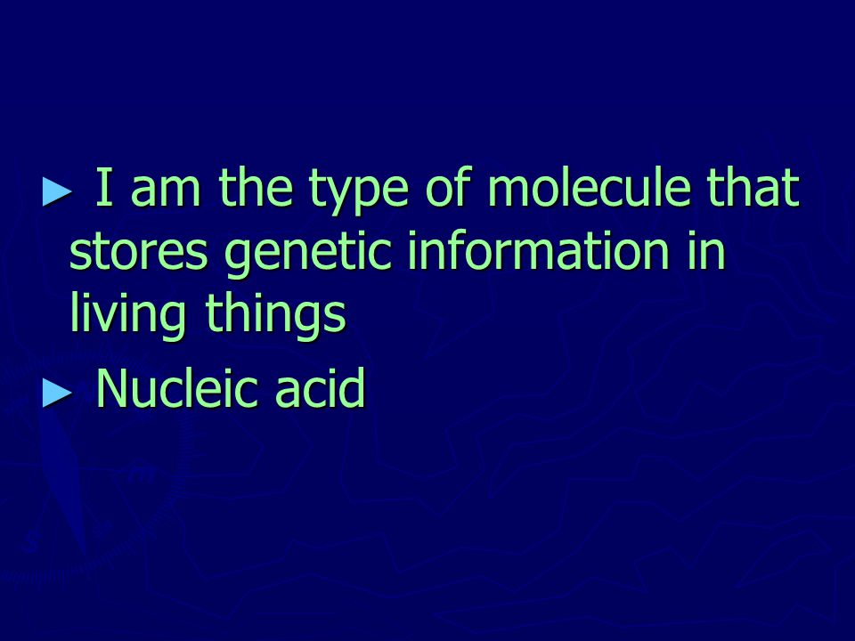 I am the type of molecule that stores genetic information in living things