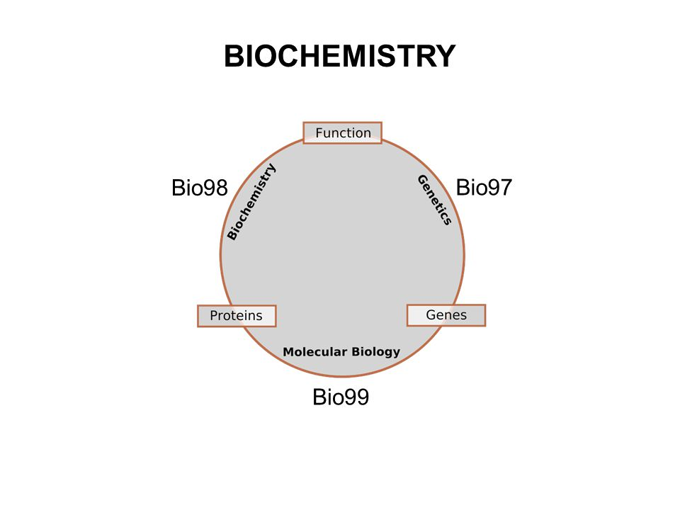 BIOCHEMISTRY Bio98 Bio97 Bio99