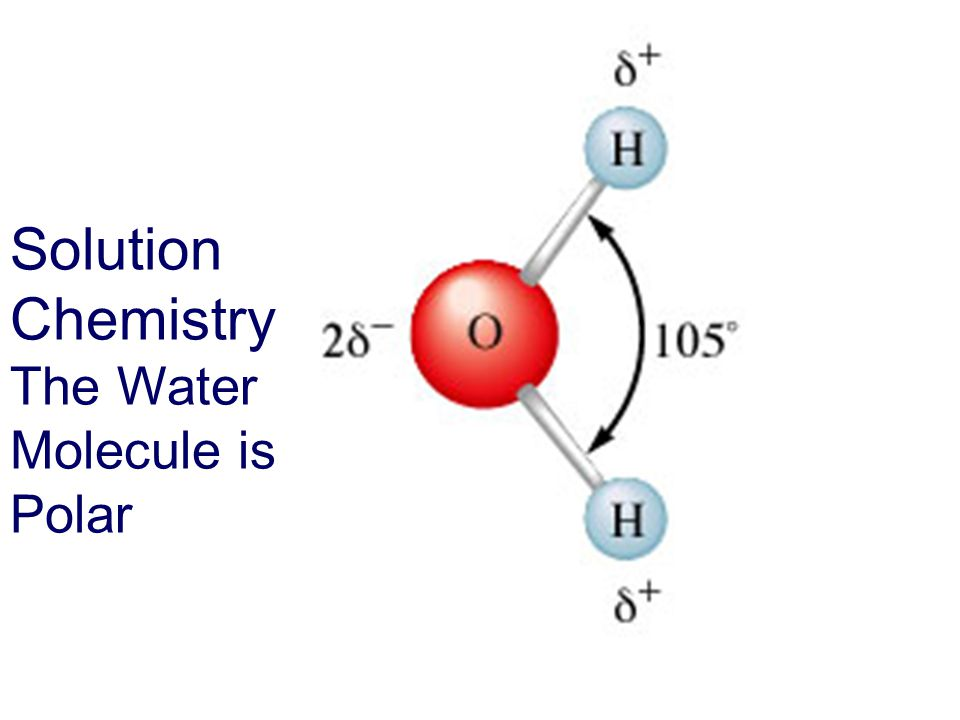 Solution Chemistry The Water Molecule is Polar