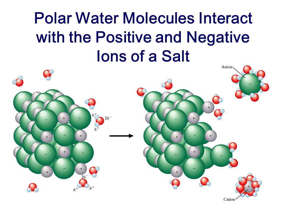 Polar Water Molecules Interact with the Positive and Negative Ions of a Salt