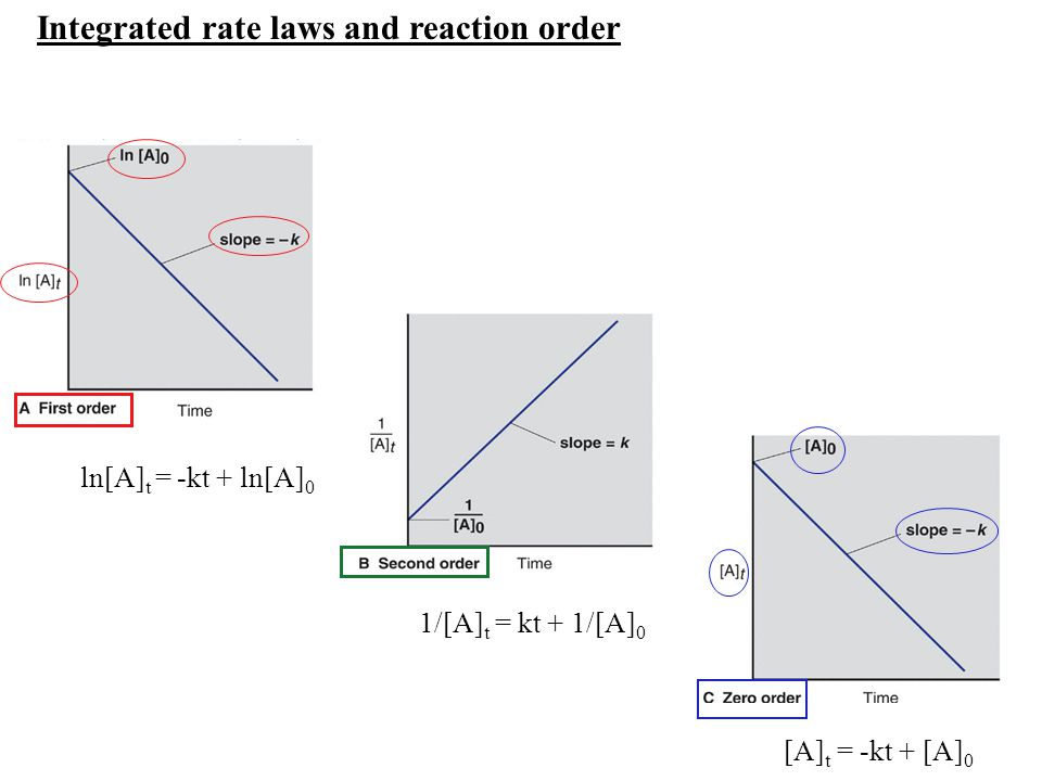 Integrated rate laws and reaction order