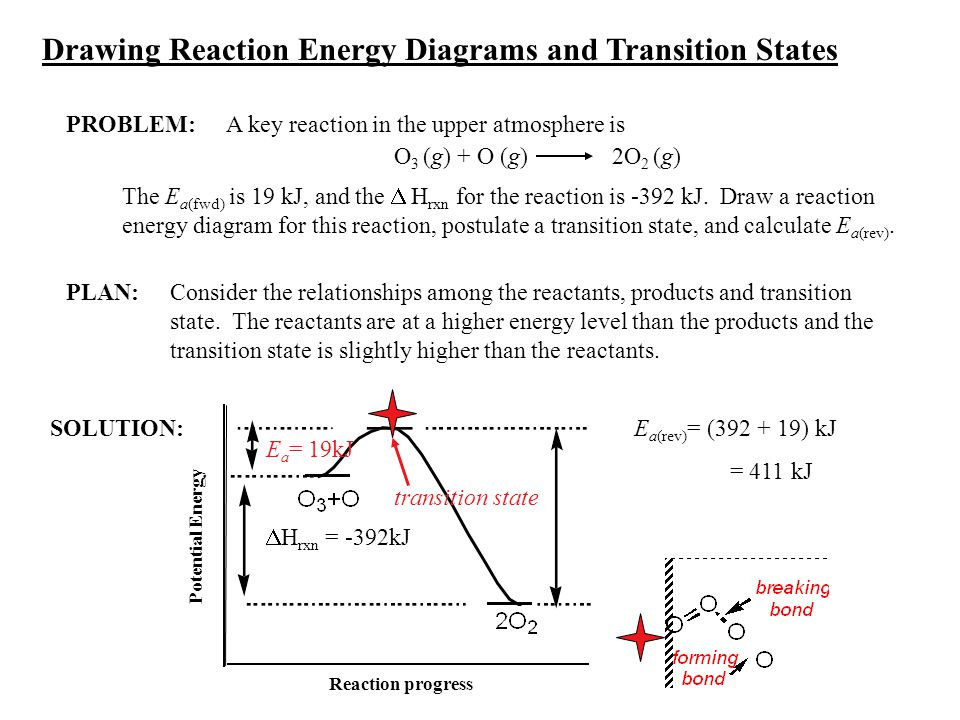 Drawing Reaction Energy Diagrams and Transition States
