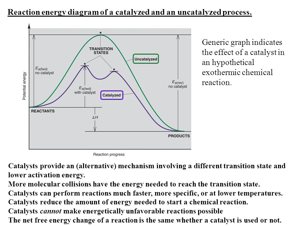 Reaction energy diagram of a catalyzed and an uncatalyzed process.