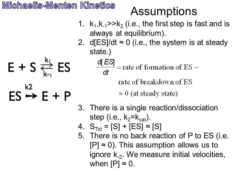 Assumptions Michaelis-Menten Kinetics