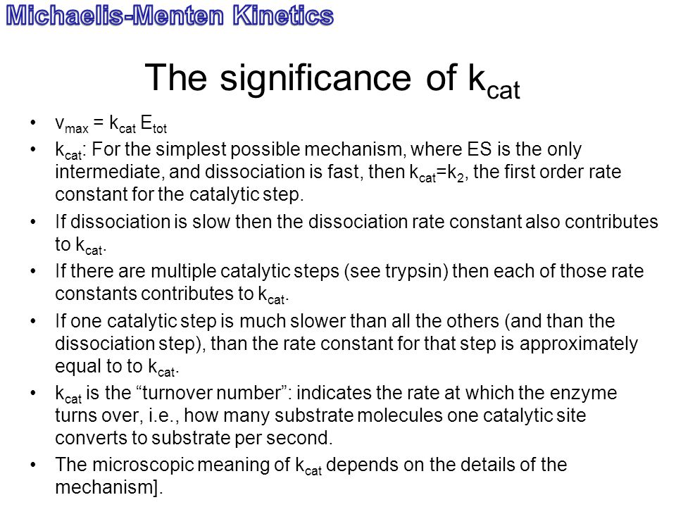 The significance of kcat