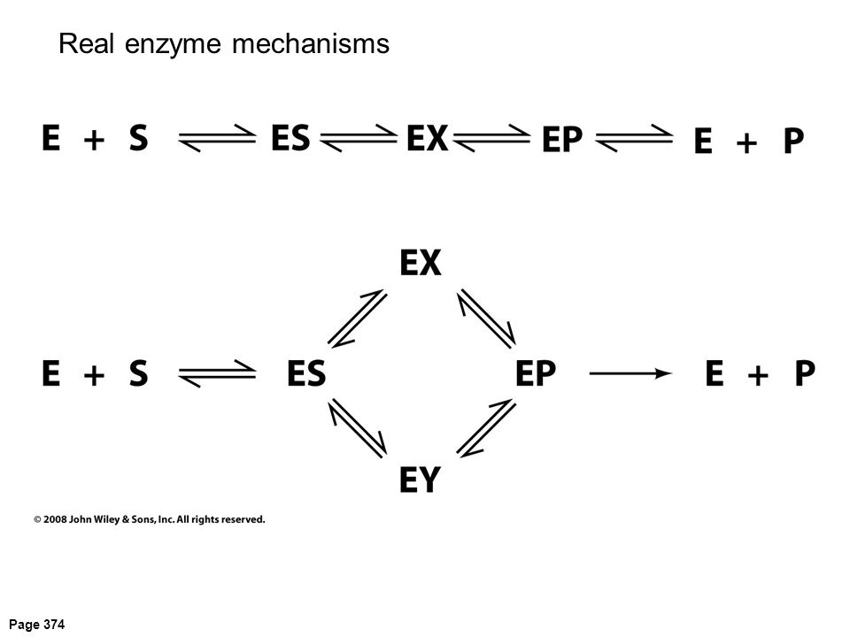 Real enzyme mechanisms