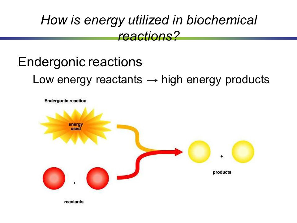 How is energy utilized in biochemical reactions